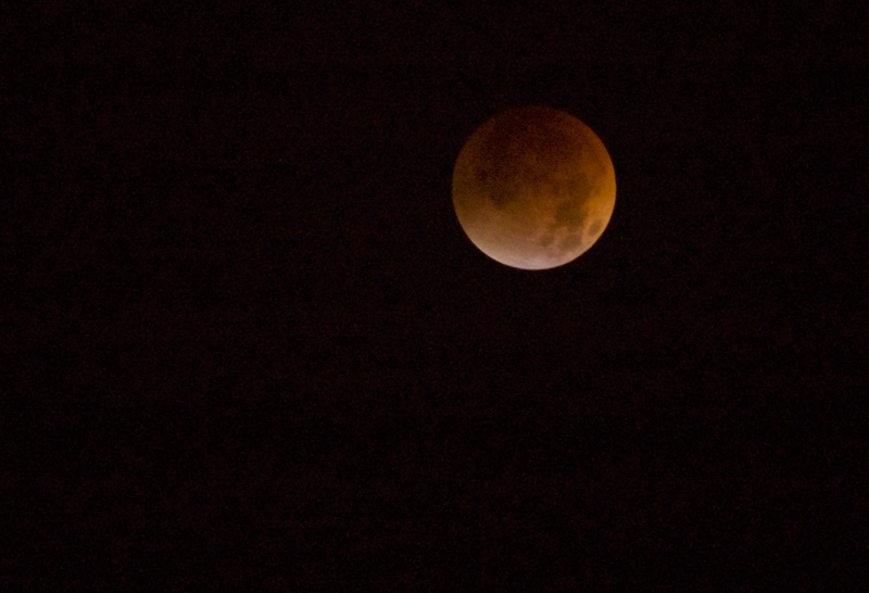 Lunar Eclipse, August 28, 2007