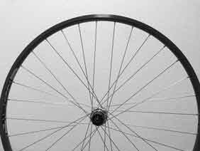 Mavic Open Pro CD rim with Campagnolo 8 Speed Hub